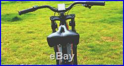 Carbon Fiber e-bike mountain 8 speed high quality 750w 48V electric bicycle